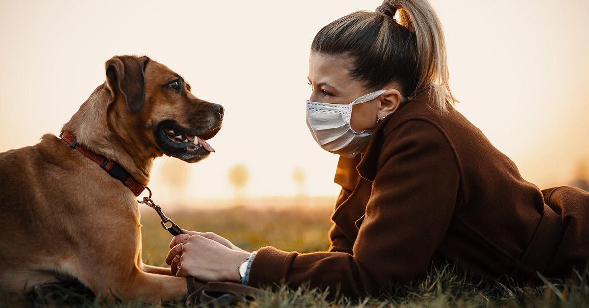 Coronavírus e pets: cuidados no condomínio
